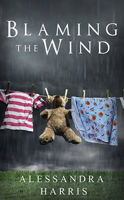 Blaming the Wind (1)